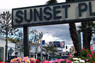 Sunset Strip - 360 Realty 135x90